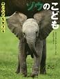 ゾウのこども サバンナを生きる