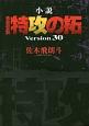 小説・疾風伝説 特攻の拓 Version30