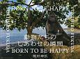 動物たちのしあわせの瞬間-とき- BORN TO BE HAPPY