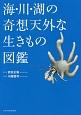 海・川・湖の奇想天外な生きもの図鑑