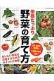 栄養たっぷり野菜の育て方 41種類の野菜と129品種を紹介!