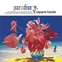 paradise〜夏の恋を続けよう〜