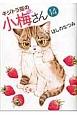 キジトラ猫の小梅さん (14)