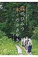 森のひみつ 木々のささやき ふつうの人が森へ行く日