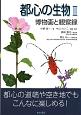 都心の生物 博物画と観察録(2)