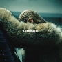 LEMONADE (CD+DVD)(DVD付)