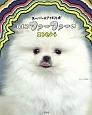スーパー☆アイドル犬 白もこファーファーのエトセトラ
