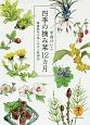 四季の摘み菜12カ月 健康野草の楽しみ方と料理法 摘んだ草がたちまちごちそうになる。身近な72種を紹