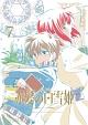 赤髪の白雪姫 vol.7(通常版)
