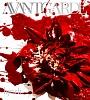 AVANTGARDE(DVD付)
