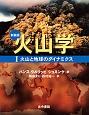 火山学<新装版> 火山と地球のダイナミクス (1)