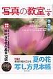 写真の教室 特集:表現の幅が広がる夏の花写し方見本帳 (65)