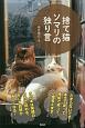捨て猫ソマリの独り言