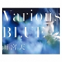 Various BLUE(BD付)