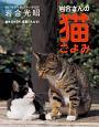 卓上カレンダー 岩合さんの猫ごよみ 2017