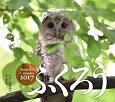 ふくろうカレンダー 2017