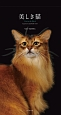美しき猫 Cats in the Blackカレンダー 2017