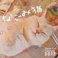 週めくりカレンダー なごみ猫 2017