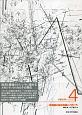 メガシティ 新興国の経済発展とメガシティ (4)