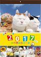 かご猫壁掛けカレンダー 2017