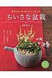 草花でなごむ癒しのインテリア ちいさな盆栽