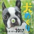犬めくりカレンダー リフィル 2017