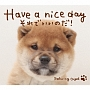 Have a nice day~それでいいのだ!/α波オルゴール