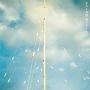愛のゆくえ(DVD付)