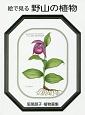 絵で見る 野山の植物 阪尾朋子植物画集