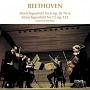 ベートーヴェン:弦楽四重奏曲第6番・第15番