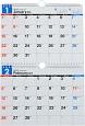 E91エコカレンダー壁掛B5×2面 2017