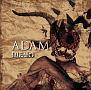 ADAM(A)(DVD付)