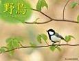 野鳥カレンダー