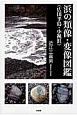 浜の類像・変像図鑑 広田半島・小祝浜
