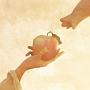 りんごの木(DVD付)