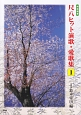 尺八ヒット演歌・愛歌集 前奏・後奏付 (1)