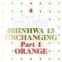VOL.13:UNCHANGING PART 1 - ORANGE (限定盤)