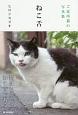 ご近所猫の写真集 ねこ舌