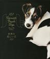 世界の美しい犬101