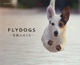 FLY DOGS 空飛ぶ犬たち