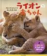 ライオンの赤ちゃん しりたいな!どうぶつの赤ちゃん