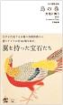 江戸博物文庫 鳥の巻 天地に舞う