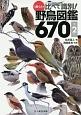 ♪鳥くんの比べて識別!野鳥図鑑670<第2版>
