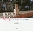 駅猫Diary 猫のくつろぐローカル線をたずねて
