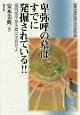 卑弥呼の墓は、すでに発掘されている!! 推理・邪馬台国と日本神話の謎 福岡県平原王墓に注目せよ