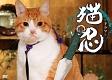 猫忍 DVD-BOX