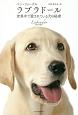 ラブラドール 世界中で愛されている犬の秘密