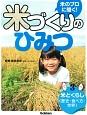 米とくらし(歴史・食べ方・世界) 米のプロに聞く!米づくりのひみつ3
