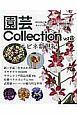 園芸Collection エビネ 新・平成三色すみれ ウラシマソウ イワチドリ (8)