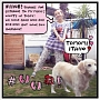 #いいね!(A)(DVD付)